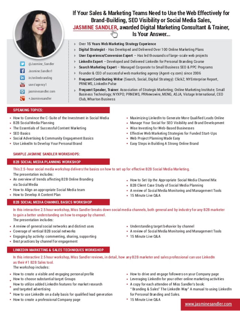 one-sheet examples digital marketing consultant